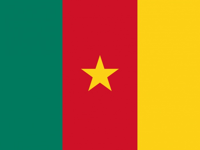 Flag_of_Cameroon-svg